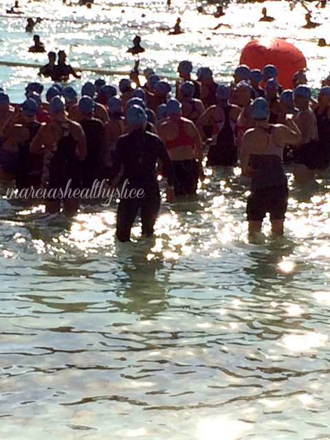 Espirit de she 2016 swim start